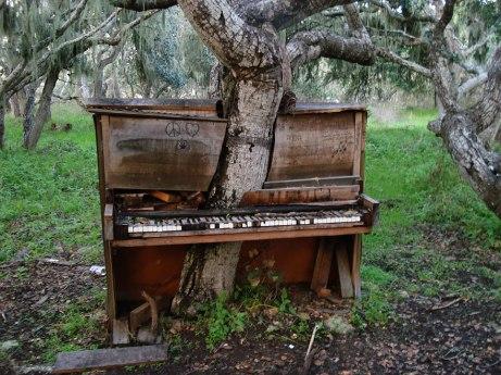 Crackoala piano